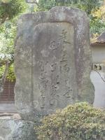 0127tokaidofujikawa051_1