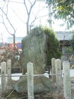 0128tokaidookazaki043