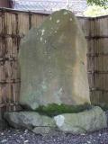 0222tarui003