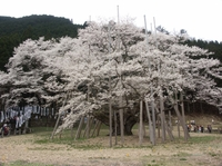 Usuzumi02