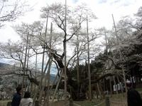 Usuzumi05