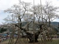 Usuzumi07