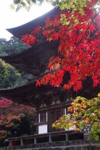 Saimyouji0033