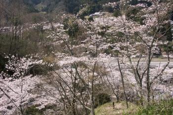 Yagyu0031