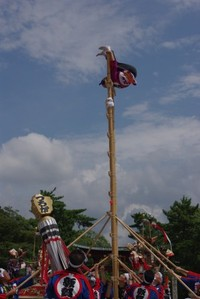 Tobi0031