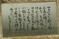 Kira027
