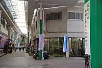 Shinmichi02_2