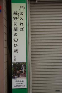Shinmichi03