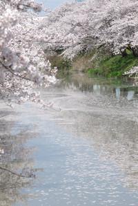 Gojyogawa21_2