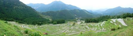 Maruyama15