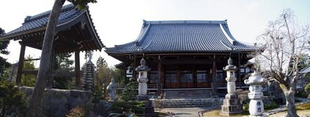 Shinkano13