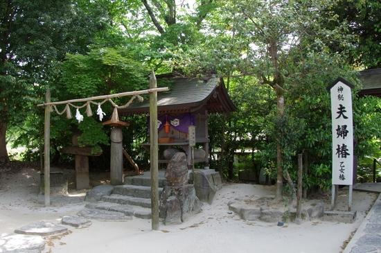 Yaegakis07