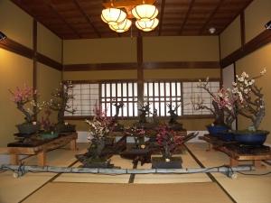 028sakamoto018