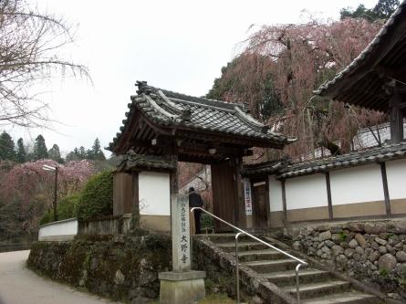 Nara01