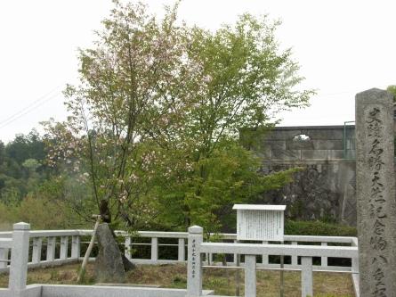Hanagaki1