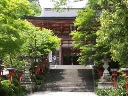 Kurama02