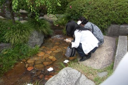 Natugosiharai005_2