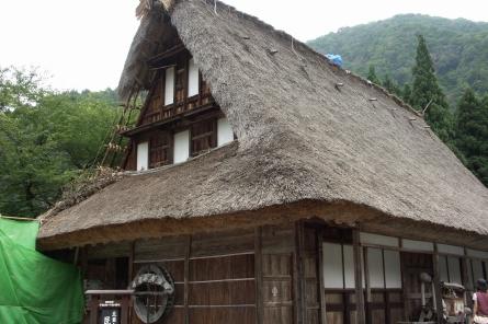 Suganuma004