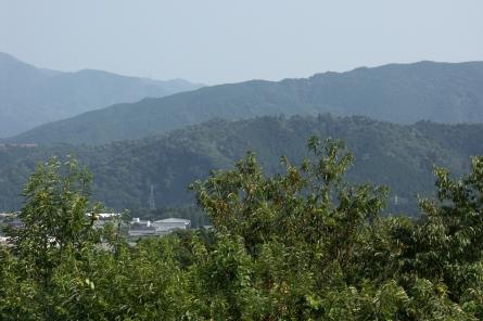 Sasaoyama4