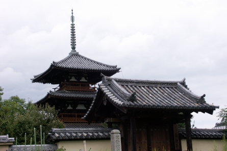 Ikaruga006