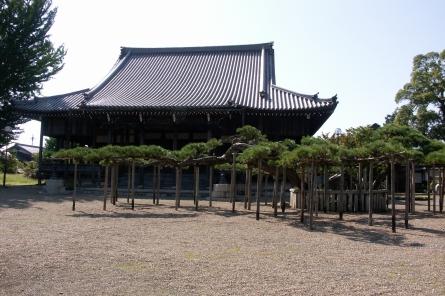 Hotkoku005