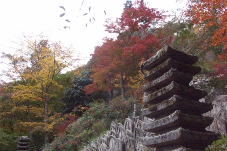 Syoryakuji009