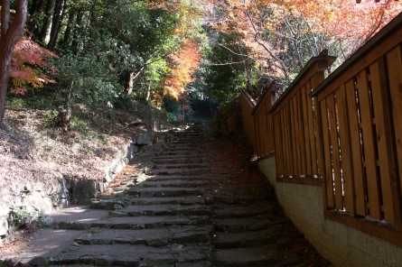 Jyokoji0071