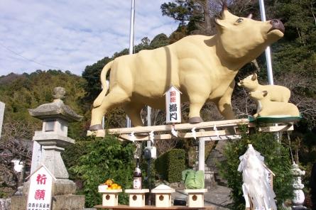 Misato0081