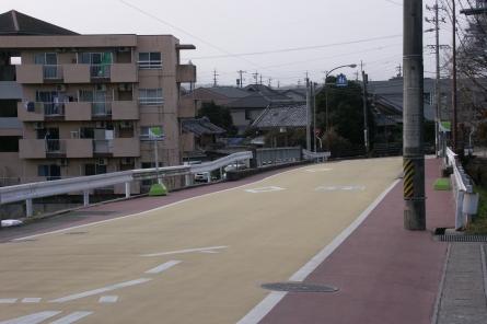 Kameyama008