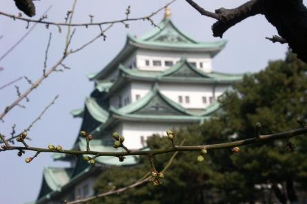 Nagoyajyo012
