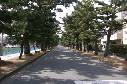 Maisaka002