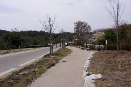 Kuragaike002