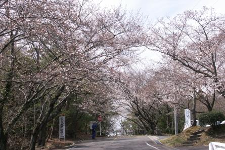 Kuragaike0041
