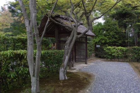Katura003