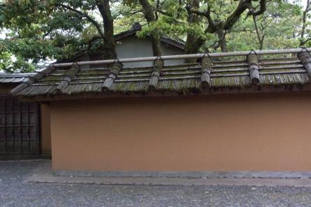 Katura012_2