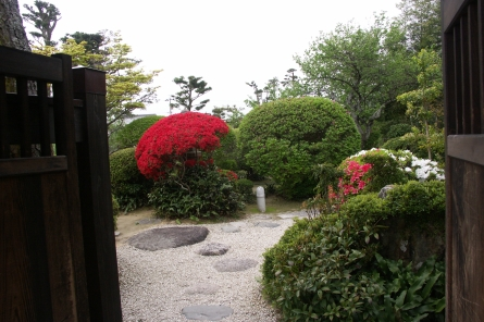 Yasuragip011