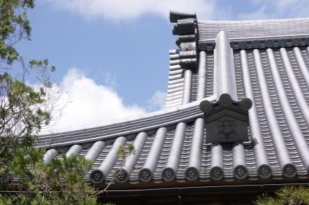 Kotaiji006