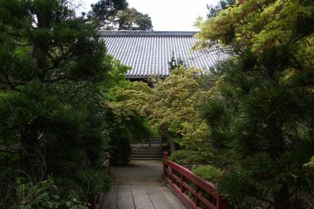 Kotaiji009