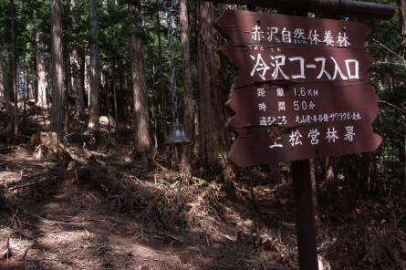 Akazawa002_2