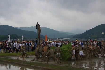 Otaue009