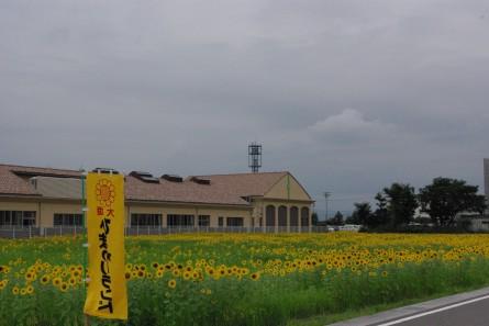 Kamisyuku005