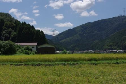 Sansaku001