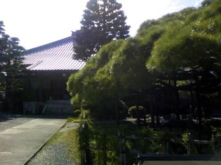Fujieda004