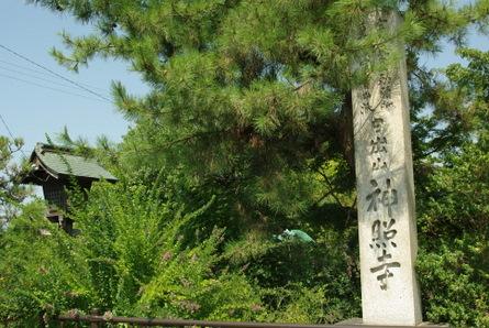 Jinsyoji02
