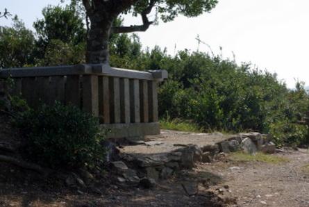 Wagu0111
