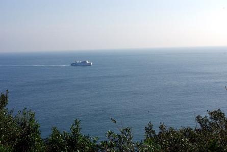 Wagu012