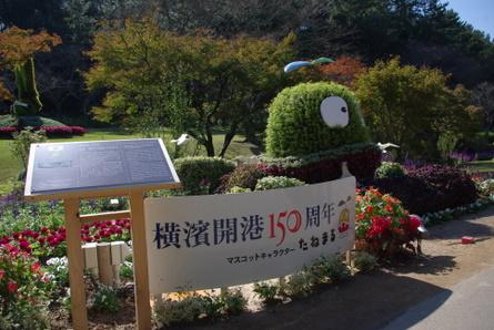 Hamanako012