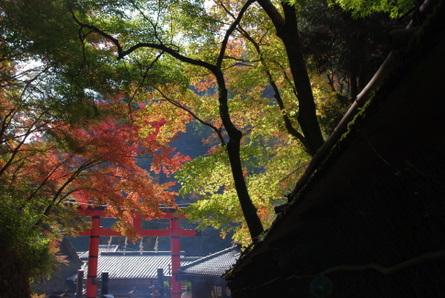 Kiyotaki01