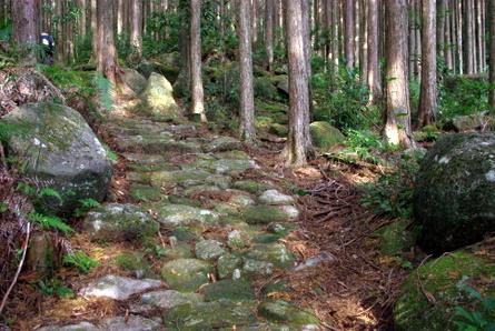 Yakiyama02