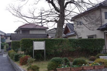 Moriyama13